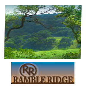Ramble Ridge Ranch